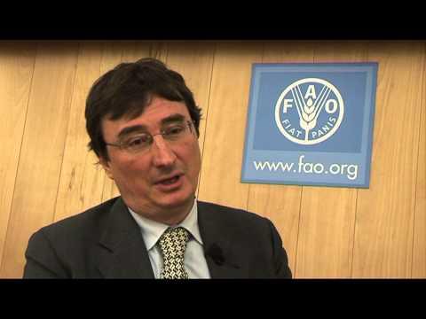 Global Soil Partnership interviews - Luca Montanarella