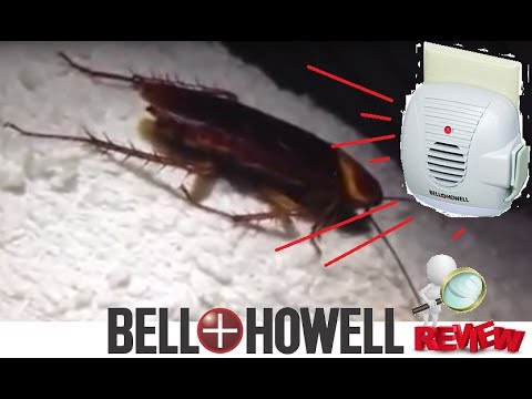 Bell & Howell Ultrasonic Pest Repeller REVIEW Unboxing works Palmetto Bugs  ROACHES Insects Kitchen