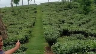 Download Video চল গরি নিজাব তোকে মোর দাঁত MP3 3GP MP4