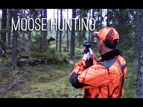 NH: Hirvijahti | Moose Hunting In Finland | 2016