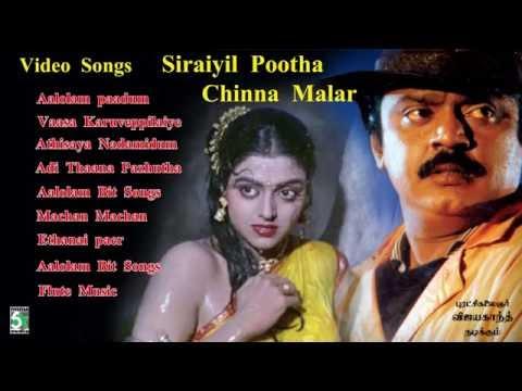 சிறையில் பூத்த சின்ன மலர்| Siraiyil Pootha Chinna malar| video