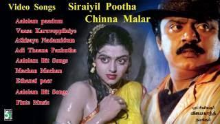 சிறையில் பூத்த சின்ன மலர்  | Siraiyil Pootha Chinna malar  | video