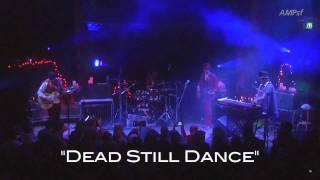 Play Dead Still Dance
