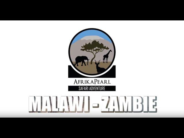 019 MALAWI ZAMBIE carte postale 01