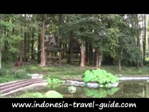 Great Bukit Barisan Forest Park Travel Guide