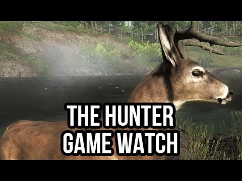 TheHunter: (Free PC Hunting FPS Game): FreePCGamers Game Watch