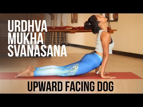 How to do Upward Facing Dog Urdhva Mukha Svanasana