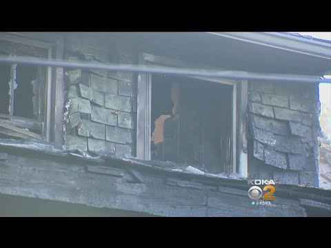 Woman Escapes Fire At Braddock Hills Home, Pets Missing