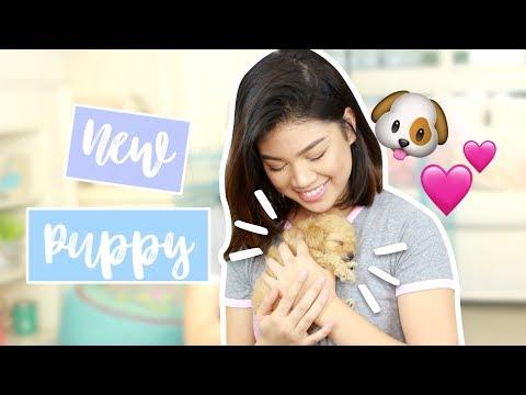 I GOT A PUPPY!!! | Janina Vela