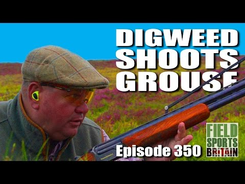 Fieldsports Britain - Digweed Shoots Grouse