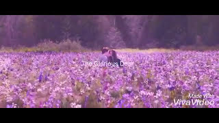 The Glorious Death ( Twilight MV )