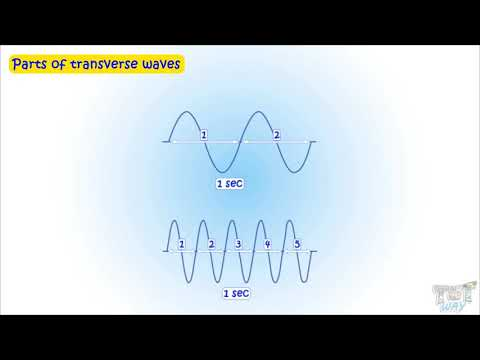 sound-(part-2)|transverse-and-longitudinal-waves-|-science-|-grade-4-|-tutway-|