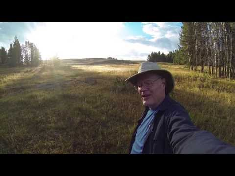 Joseph's Coat Hot Springs:  Yellowstone National Park