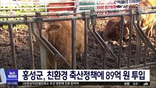 홍성군, 친환경 축산정책으로 미래축산 선도/대전MBC