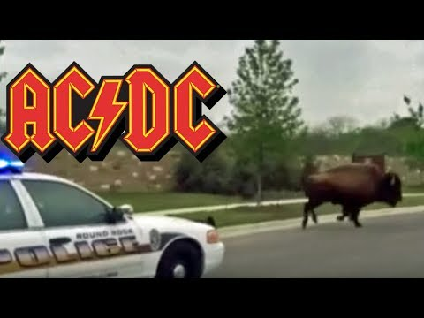 Mikey - Montana Sheriff Plays AC/DC to Scare Bison