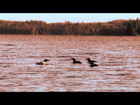 Devils Lake - North American Fisherman 2014 Show 12