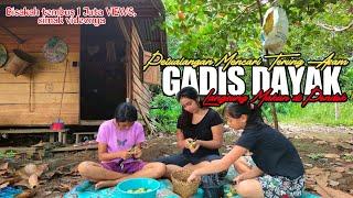 🔴Gadis Dayak Panen Terung Di Ladang Langsung Masak Dipondok Dan Makan Bersama Gadis Dayak Kalimantan