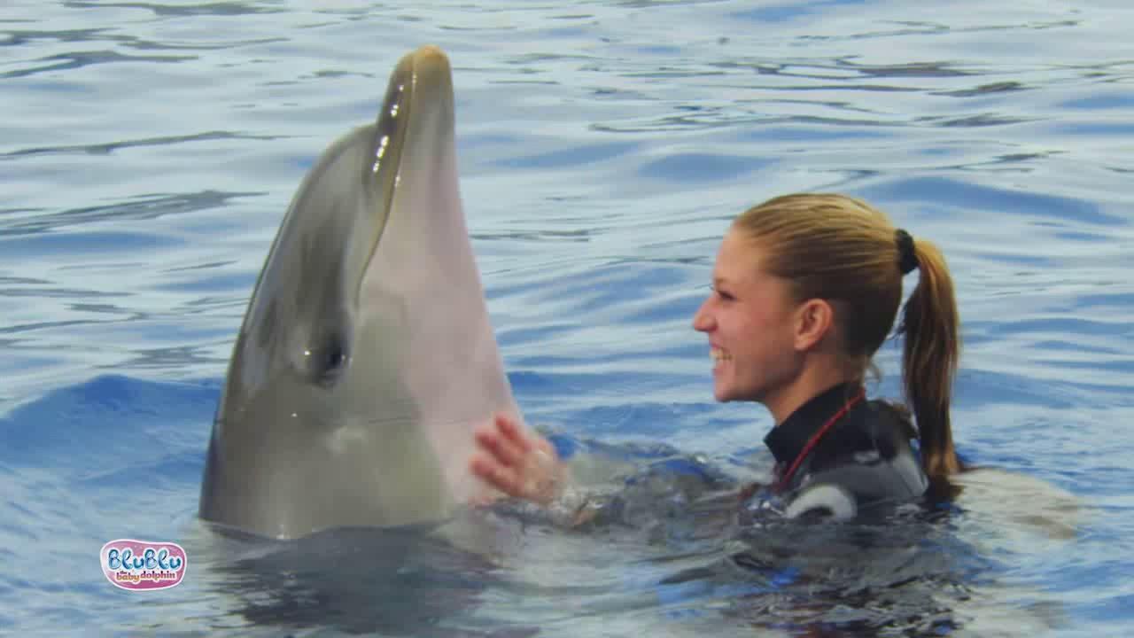 Club Petz Blu Blu The Baby Dolphin 2 New Functions Youtube