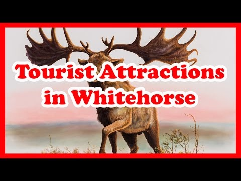 5 Top-Rated Tourist Attractions in Whitehorse | Canada Trave