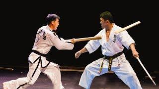 ITF Taekwondo vs Kyokushin