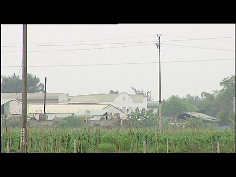 (VTC14)_Hải Dương: Hậu quả do xây dựng khu công nghiệp ồ ạt