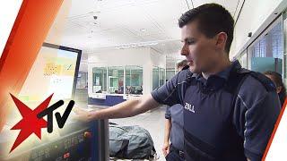 Zoll am Flughafen München im Einsatz: Ausgestopfte Tiere, illegale Waren | stern TV