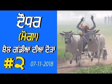 OX RACES #2 🔴 ਬੈਲ ਗੱਡੀਆਂ ਦੀਆਂ ਦੌੜਾਂ बैलों की दौड़ें  بیلوں کی دودن  at DAUDHAR Moga 17 01 2019