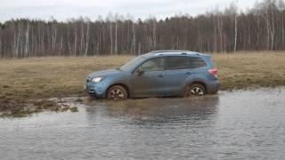 Subaru Forester 2016 (рестайлинг) на раскисшем поле.  Тест-драйв Ъ-Авто