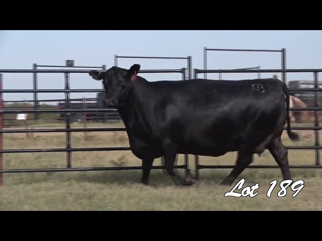 Pollard Farms Lot 189