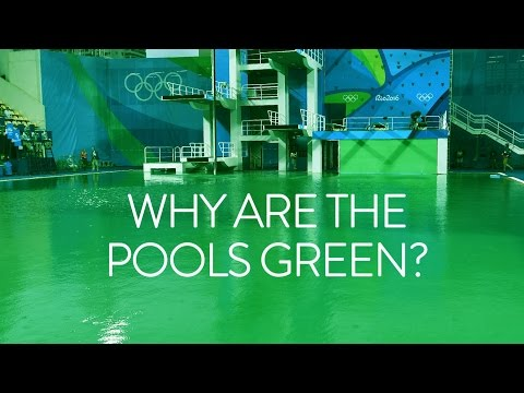 Why are the Olympic diving pools green? Olympic Games Rio 2016 - BBC Sport