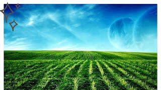 Праздник «День мелиоратора» в 2021 году отмечается 6 июня