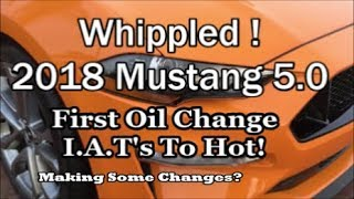 2018 Mustang GT 5.0   First oil Change I.A.T's To Hot!!