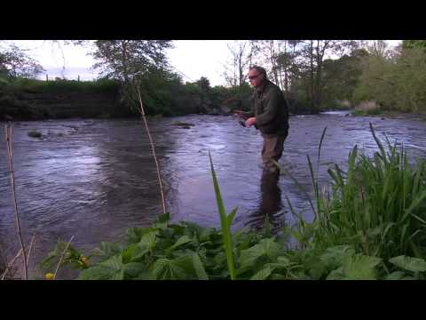 How To Catch Wild River Trout Using The Upstream Worming Technique