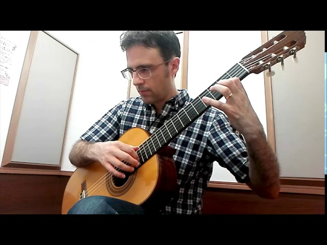 Beginning Classical Guitar: Canario (Carlo Calvi)