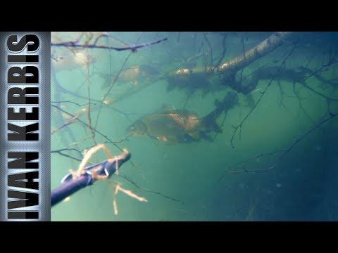 Отвал башки!😵 Подводная