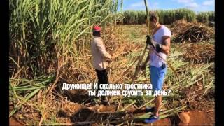 Орёл и Решка - 8.24 Выпуск (На краю света. Маврикий)