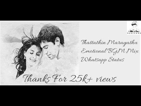 Thattathin marayathu|Emotional Bgm mix|Perfect whatsapp status