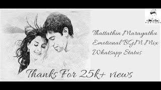 Thattathin marayathu|Emotional Bgm mix|Perfect whatsapp status