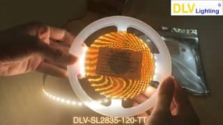 DLV-SL2835-120-TT. Đèn led dây 2835 12V 120led/m ánh sáng trung tính - DLV Lighting