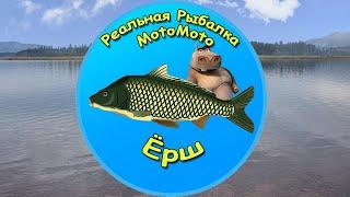 Как поймать Ерша на Братском водохранилище NEW Реальная Рыбалка