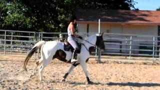 No stirrups - jumping lesson