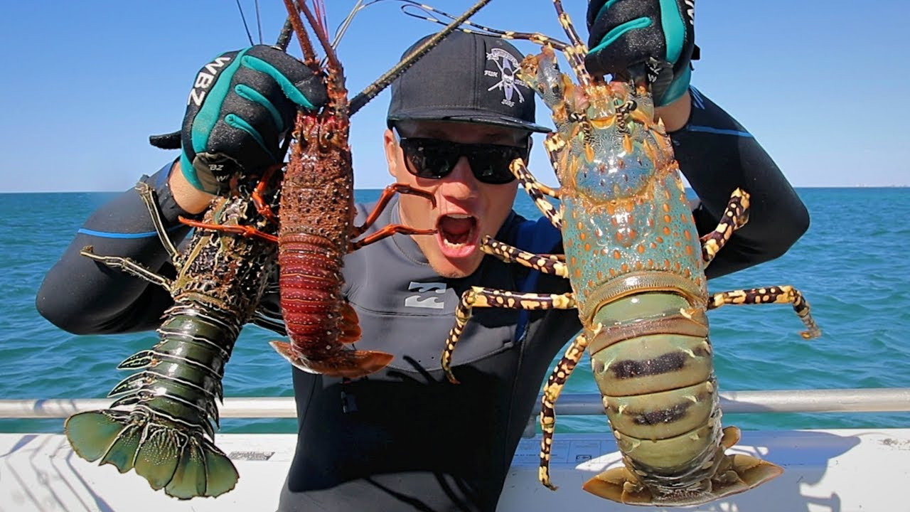 THE HUNT - EP 6 CATCHING ROCK LOBSTER ( HOW TO CATCH AND COOK CRAYFISH )