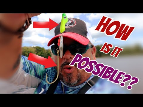 Can I catch BASS with WALLEYE LURES??  Fishing Challenge!! (SURPRISING!)