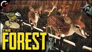 ANIMAL PARK! Peaceful Zoo Base Mode | The Forest Gameplay