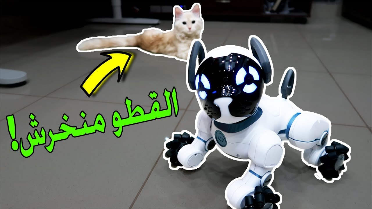 اغرب الاشياء اللي ممكن تشتريها من امازون | الكلب الآلي الذكي!! #5