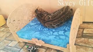 """бенгальский котенок, бенгальская кошка, питомник бенгальской кошки """"Skyey Gift"""""""
