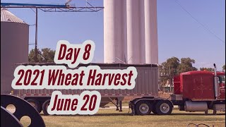 Day 8 - 2021 Wheat Harvest  / June 20 (Medicine Lodge, Kansas)