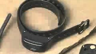 Innotek Field Pro Collar Overview