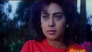 E Bhoomi Bannada Buguri Videosong 1080p HDTV-Maha Kshatriya- Dr Vishnuvardhan