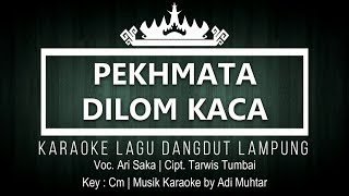 Download Mp3 Pekhmata Dilom Kaca - Karaoke No Vocal - Lagu Dangdut Lampung - Voc. Ari Saka -